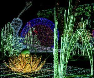 the-royal-garden-of-light-lazienki-krolewskie-1